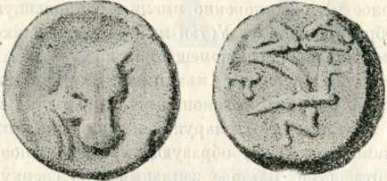 Пантикапейская бронзовая монета с изборажением головы быка, хлебного колоса и плуга. II в. до н. э.